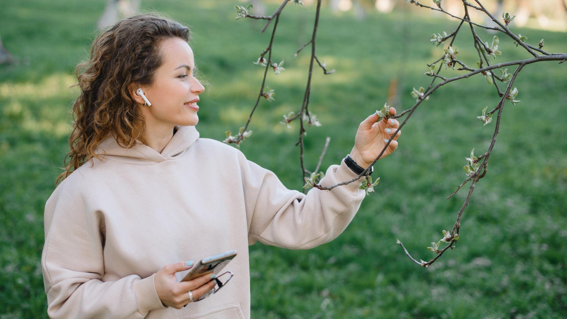 Дендрологический сад им. С.Ф. Харитонова: познавательная прогулка для любителей природы